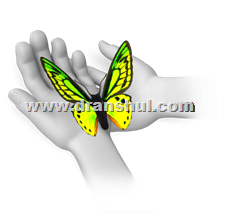 butterfly_sitting_in_hands_8118-tato